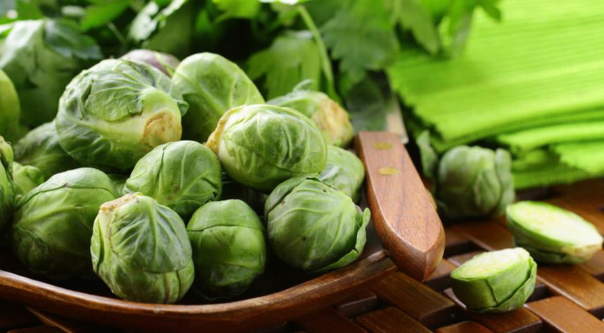 Выращивание брюссельской капусты -