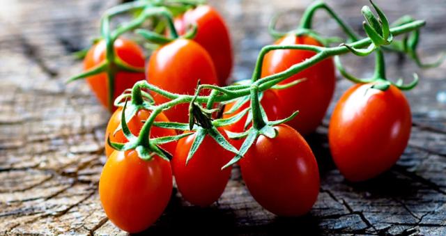 Когда сеять помидоры на рассаду и в теплицу в 2021 году: сроки