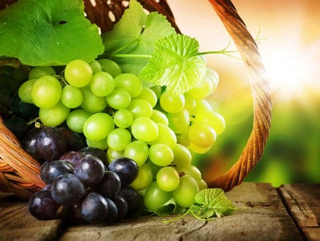 Сорт винограда регион