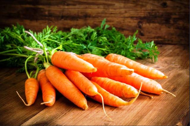 Когда сажать морковь семенами в открытый грунт?