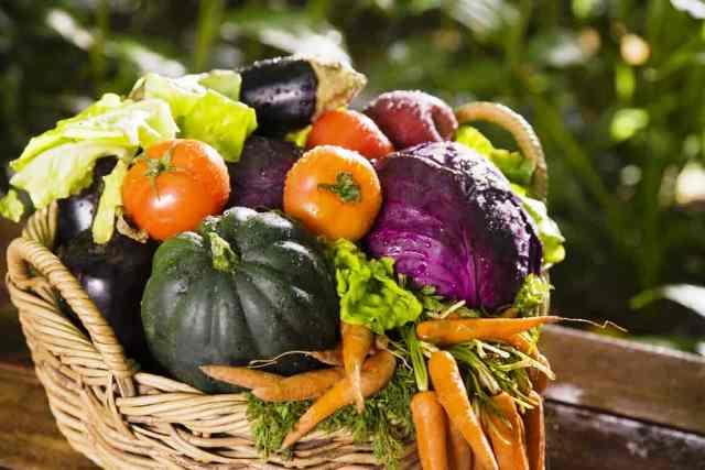 Благоприятные дни для садовода и огородника в сентябре 2020 года