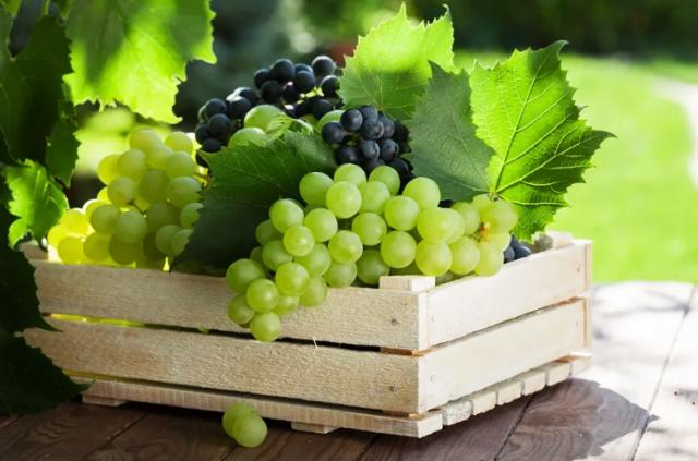 Виноградный сок в домашних условиях: простые рецепты как приготовить на зиму