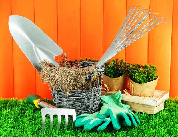 Лунный посевной календарь на апрель 2021 года для садовода и огородника: благоприятные дни