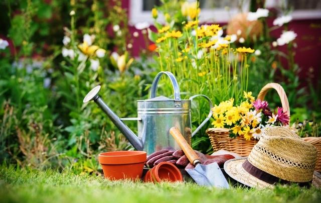 Посевной календарь садовода и огородника на май 2021 года: благоприятные дни